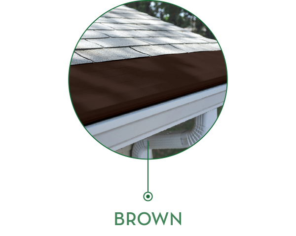 brownnew